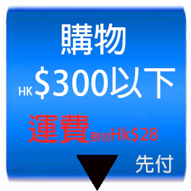 409shop-payment-below-299