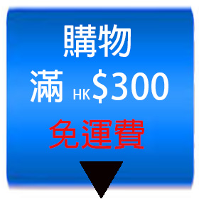 409shop-payment-up-to300